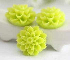 Lime Green Dahlia / Mums Flower Resin Cabochons 6pc